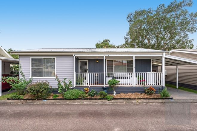 Picture of 54/554 Gan Gan Road, ONE MILE NSW 2316