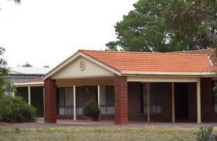 Picture of 20 Wilkinsons Lane, Euroa VIC 3666