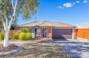 Picture of 10 Arndt Street, Forde ACT 2914