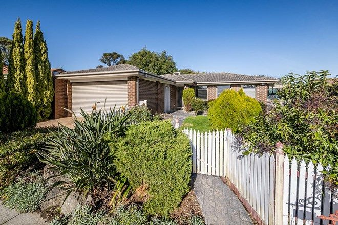Picture of 51 Norfolk Drive, NARRE WARREN VIC 3805