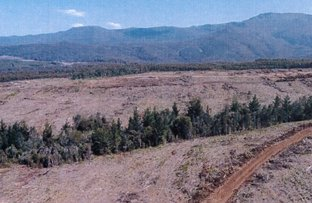 Picture of - Loongana Road, Loongana TAS 7315