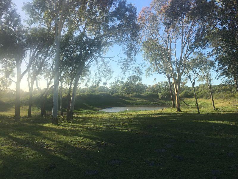 Vass Road, Etna Creek QLD 4702, Image 0