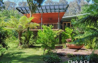 Picture of Lot 1/4265 Mansfield-WoodsPoint Road,, Jamieson VIC 3723