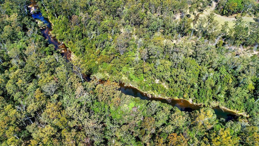 239 Curlew Drive, Lanitza NSW 2460, Image 1