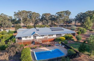 Picture of 117 O'Driscoll Street, Bakers Hill WA 6562