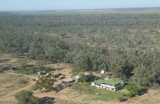 Picture of Wyandra QLD 4489