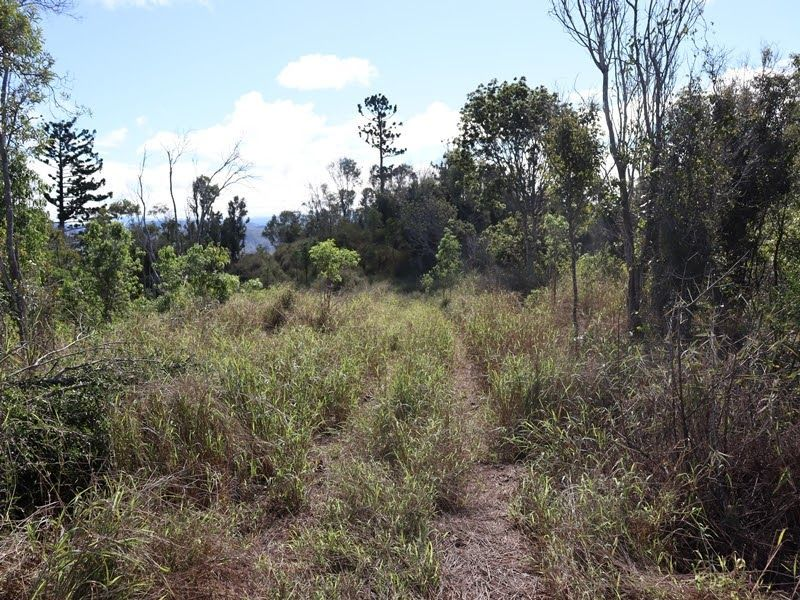 Scrubby Creek QLD 4570, Image 2