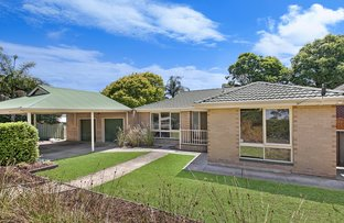 Picture of 4 Derribong Rd, Modbury North SA 5092
