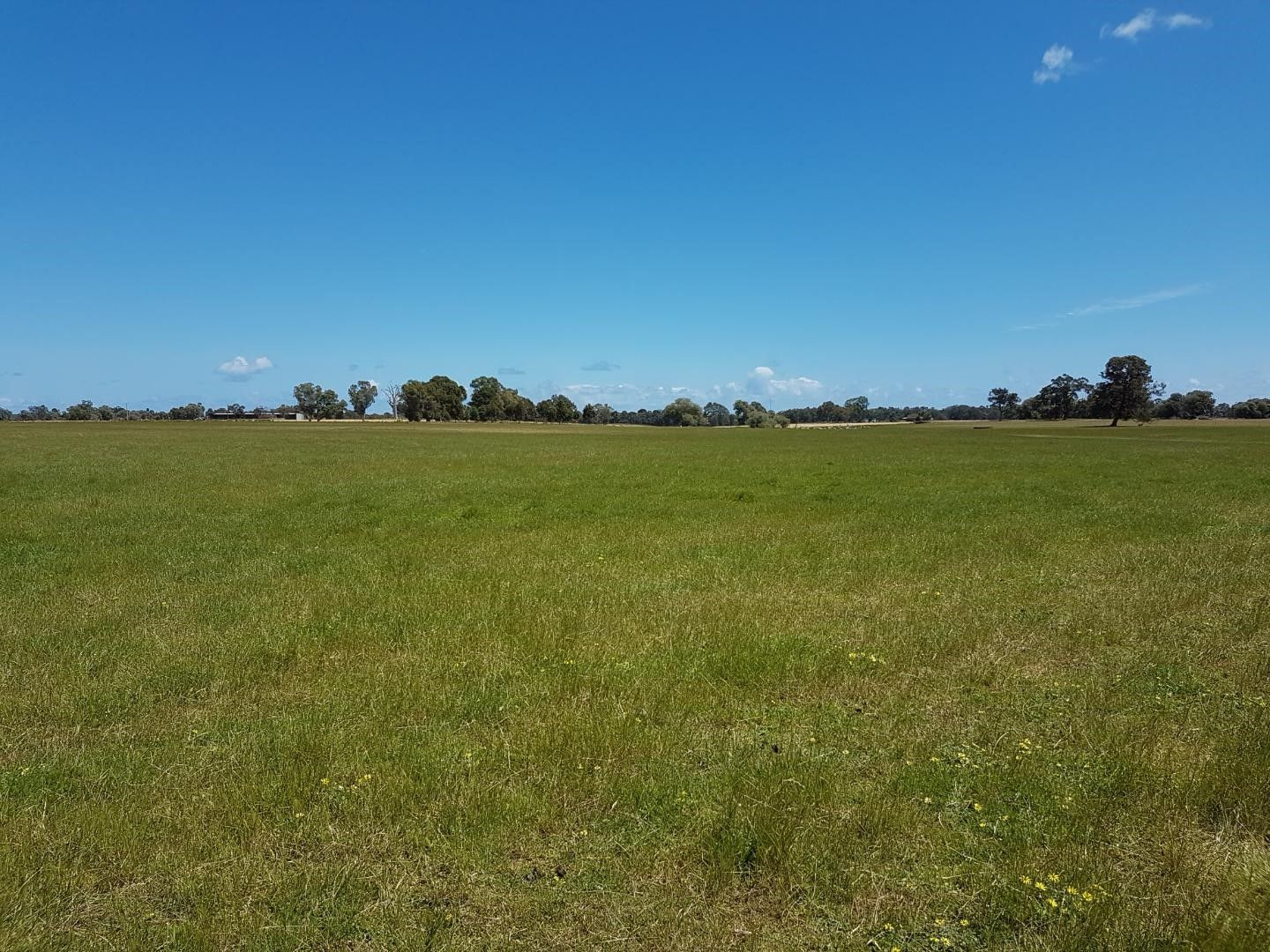 Lot 3783 Jamieson Road, Capel WA 6271, Image 0