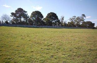 Picture of 6 Gum  Drive, Dorrigo NSW 2453