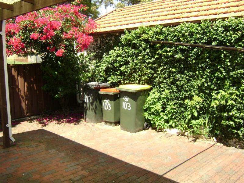 103 Sturt Street, Randwick NSW 2031, Image 4