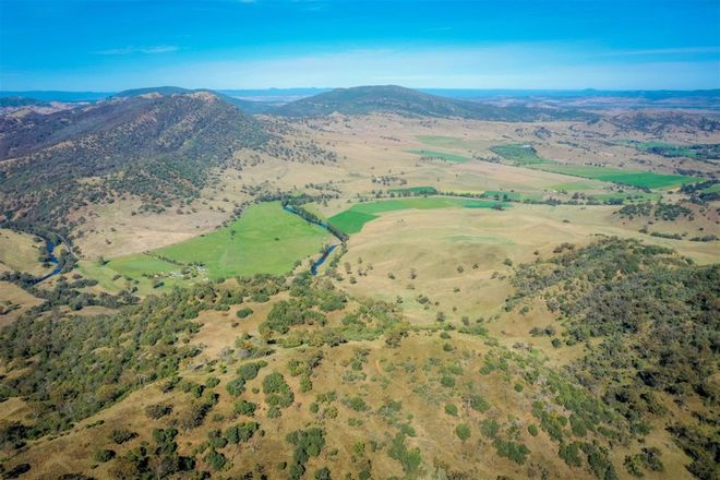 Picture of 'Spring Gully' Dalvey Rd, SCONE NSW 2337