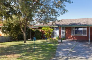 Picture of 8 Lavant Way, Balga WA 6061