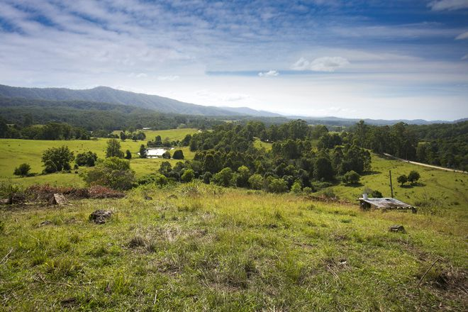 Picture of 525 Newee Creek Road, NEWEE CREEK NSW 2447