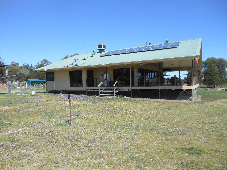 481 Greenup Limevale Rd, Coolmunda QLD 4387, Image 0