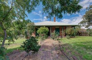 Picture of 11 Buckaroo Lane, Mudgee NSW 2850