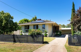 Picture of 62 Berkeley Street, Castlemaine VIC 3450