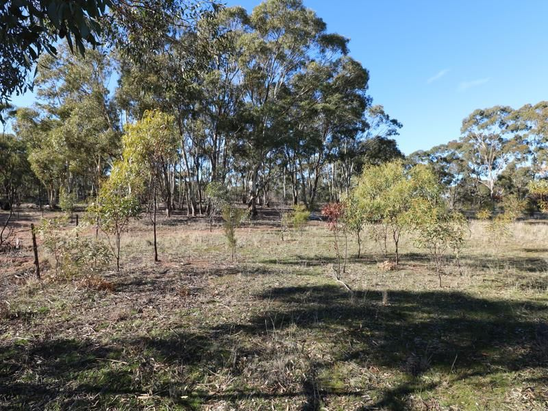 Lot 15 Josephine Drive, Wedderburn VIC 3518, Image 1