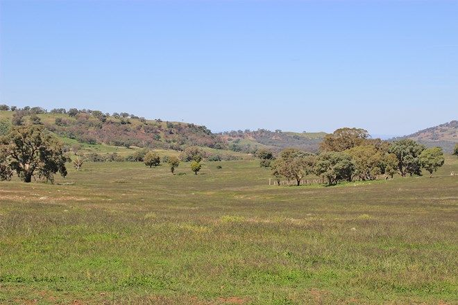 Picture of ' LUMEAH', COONABARABRAN NSW 2357