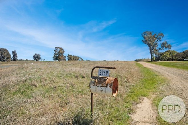Picture of 2969 Oura Road, WANTABADGERY NSW 2650