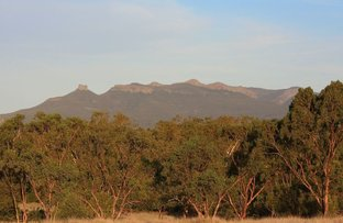 Picture of 1265 Kaputar Road, Narrabri NSW 2390