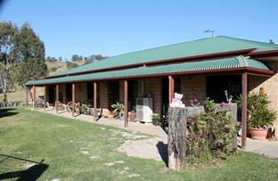 127 Apple Gum Road, Wyneden, Kyogle NSW 2474