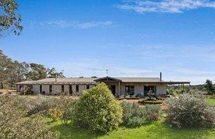 244 Tomboye Road, Braidwood NSW 2622
