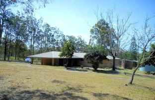 Dondingalong NSW 2440