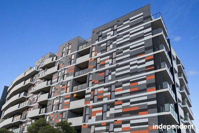 Picture of 7 Donaldson Street, BRADDON ACT 2612
