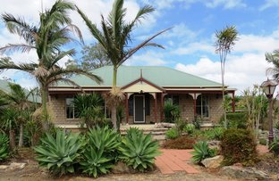 392 Mograni Creek Road, Gloucester NSW 2422