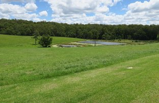 Picture of Lot 29 Geoffrey Charles Drive, Congarinni NSW 2447