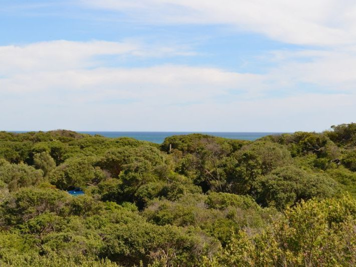 2 Beech Court, Sandy Point VIC 3959, Image 0