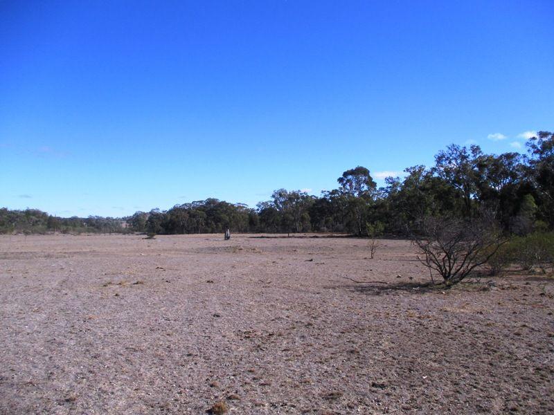 'Glenmore' 60 Windorah Rd, Inverell NSW 2360, Image 1