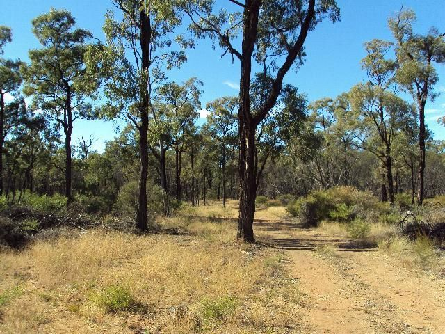 Lot 9 Myall Park Road, Miles QLD 4415, Image 1