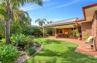 Picture of 58 Farnsworth Drive, Morphett Vale SA 5162