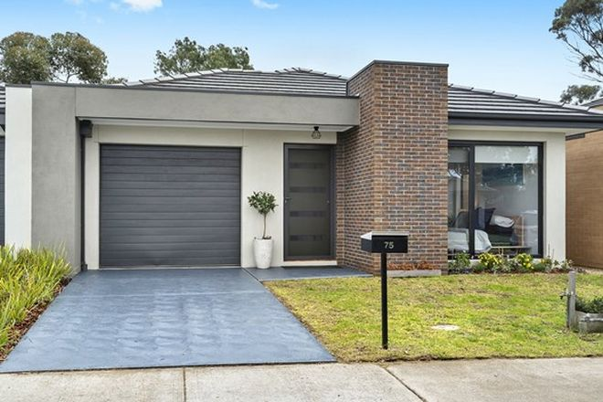 Picture of 75 Wurrook Circuit, NORTH GEELONG VIC 3215