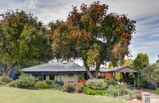 Picture of 8 Timbertop, Woodvale WA 6026