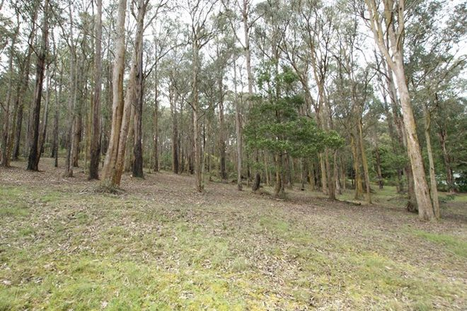 Picture of 8 Fisherman Drive, REEFTON VIC 3799