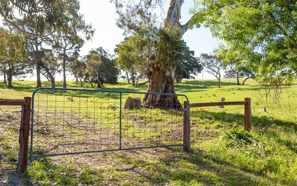 Lot 52 Parsons Road, Inman Valley SA 5211, Image 0