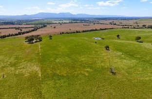 Picture of - Shannon Road, Willaura North VIC 3379