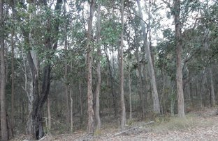 Picture of Lot 25 Counter Road, Wolvi QLD 4570