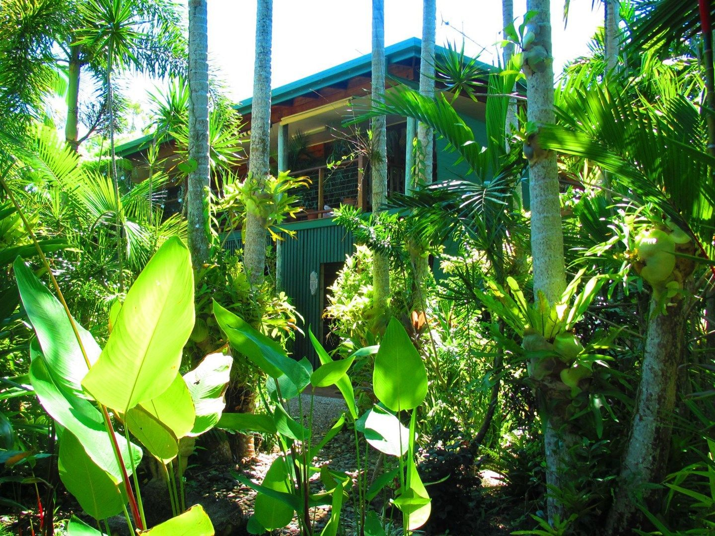 41 Conch Street, Mission Beach QLD 4852, Image 0