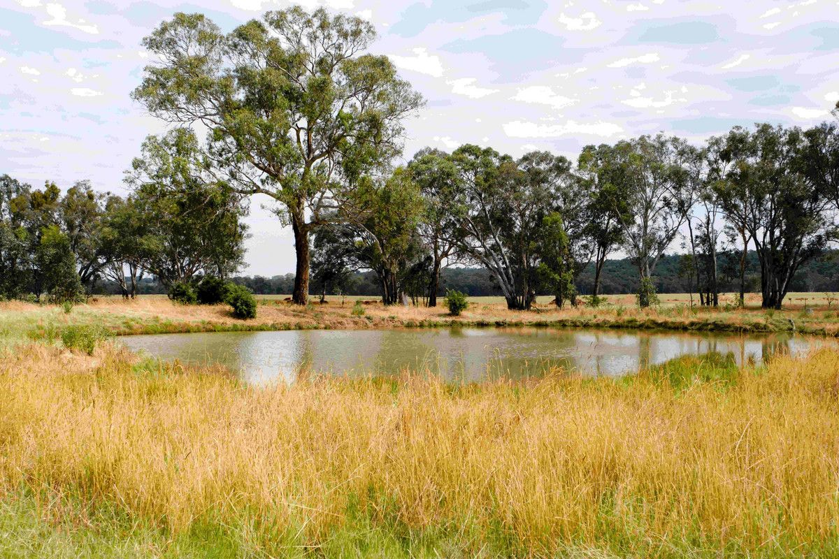 Chiltern Valley Road, Chiltern Valley VIC 3683, Image 0