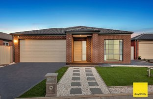 Picture of 11 Cheviot Drive, Truganina VIC 3029