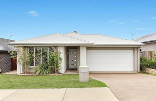 Picture of 8 Serenity Street, South Ripley QLD 4306