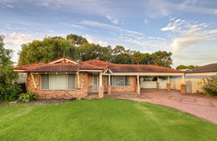 Picture of 8 Kilchatten Crescent, West Busselton WA 6280