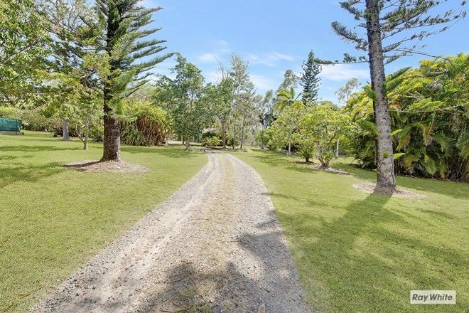 Picture of 393 Tanby Road, TAROOMBALL QLD 4703