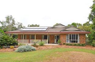Picture of 11 Mungara Court, Wondunna QLD 4655