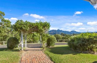 Picture of 78 OLD LISMORE ROAD, Murwillumbah NSW 2484