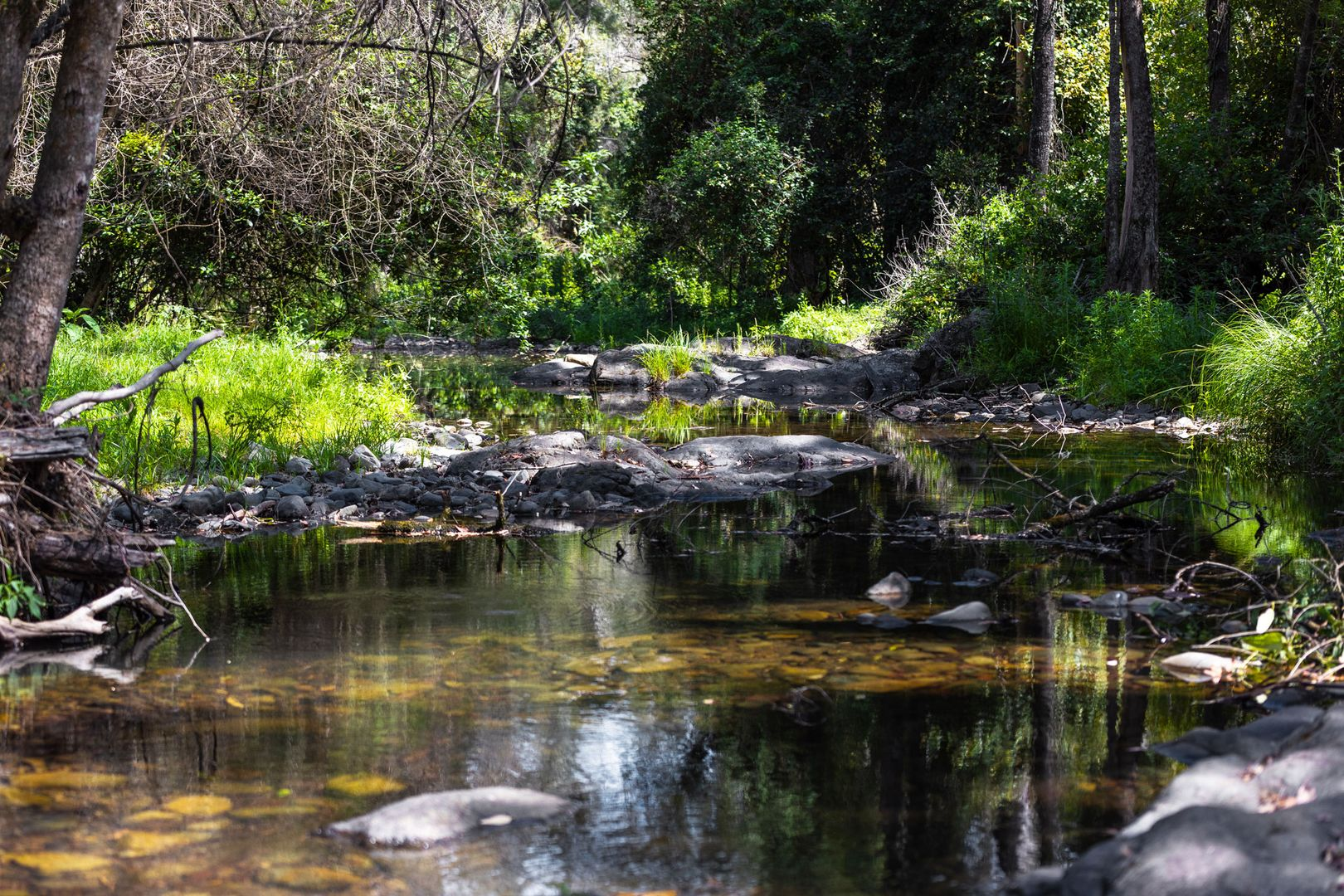 136 Craven Creek Road, Gloucester NSW 2422, Image 2
